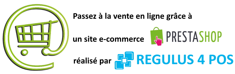 Vente en ligne site e commerce prestashop regulus 4 pos